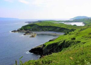 Ireland's West Cork Islands: Cows, Seals and Whiskey, Oh My!