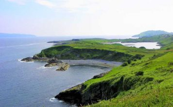 View of Lonehort Harbour from the top of Bere Island, in Ireland. Photo by Rondi Adamson