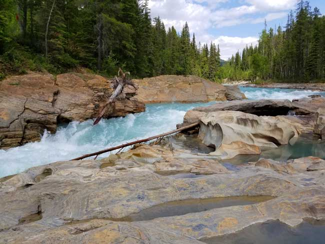 The Blaeberry River below Thompson Falls. Photo by Carrie Dow