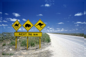 5 Best Road Trips in Australia