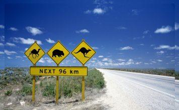 Best road trips in Australia