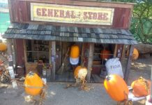 Carefree Enchanted Pumpkin Garden General Store
