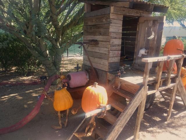 Enchanted Pumpkin Garden Outhouse Carefree AZ