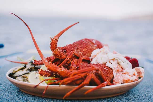 Tasmanian cuisine offers a wide variety of seafood, including crayfish. Photo by Tourism Australia & Ellenor Argyropoulos