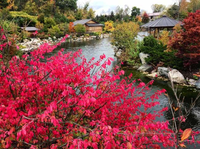 Frederik Meijer Gardens Sculpture Park in Grand Rapids, Michigan. Photo by Rich Grant