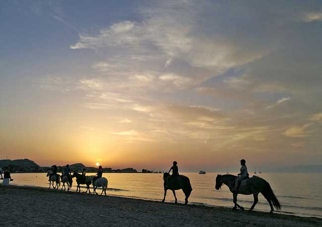 Horseback riding along the beach in Corfu. Photo by S. Geyerhofer
