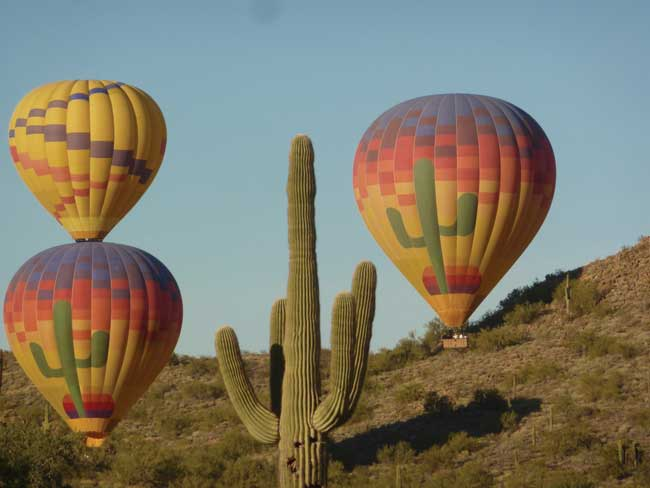 Hot air balloons and saguaro cactus in Phoenix, Arizona. Photo by Visit Phoenix