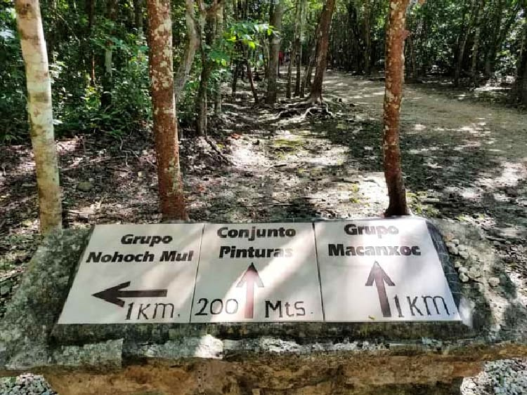 Signposts along the bike trails at Coba make it easy to find your way. Photo by Carrie Dow