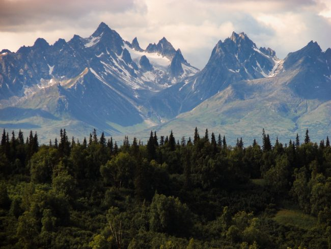 Alaskan forest and mountains.