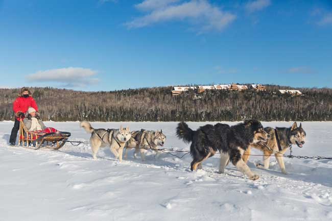 Dogsledding across frozen Lake Sacacomie, with Hotel Sacacomie in the background. Photo by Tourisme Mauricie