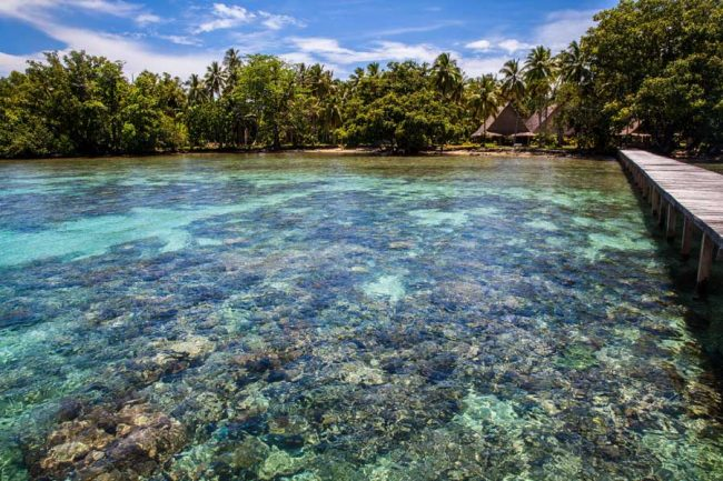 Healthy coral reefs, visible through crystal-clear water at Tavanipupu Resort, is why the Solomon Islands rank at the top of the World's Best Scuba-dive lists. At Tavanipupu Resort off the southeast corner of Guadalcanal. ©Steve Haggerty