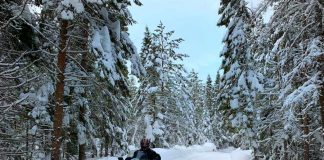 Snowmobiling in Quebec. Photo by Janna Graber