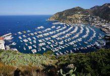 Where to go hiking on Catalina