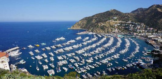 California Outdoors: Hiking on Catalina Island
