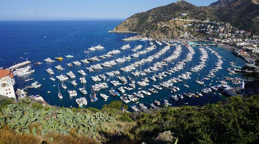 Where to go hiking on Catalina