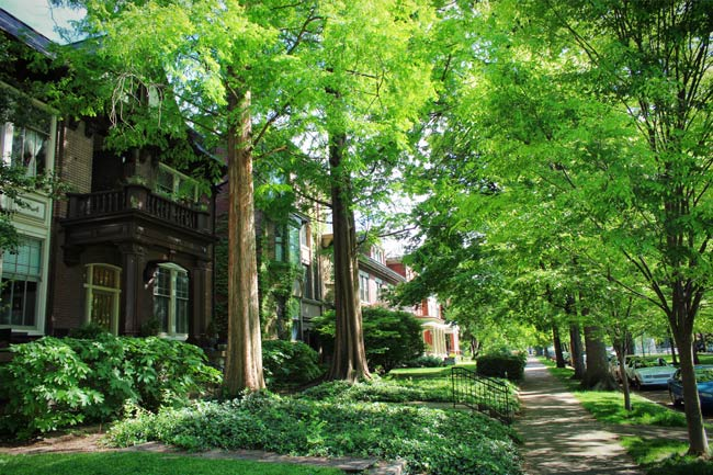The huge houses lining the streets of Old Louisville are where the city's Titans of Tobacco and Barons of Bourbon once resided. Photo by Go to Louisville