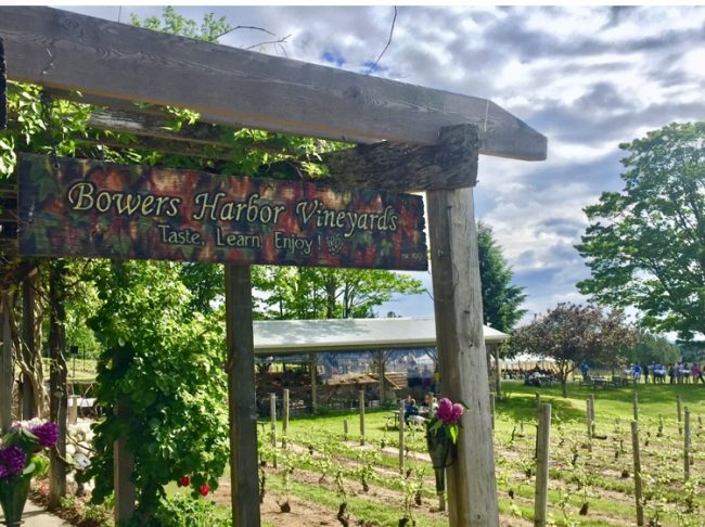 Traverse City winery tours are very popular. (Photo by Harrison Shiels)