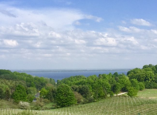 View of Traverse City's east bay from Chateau Chantal winery and hotel. (Photo by Harrison Shiels)
