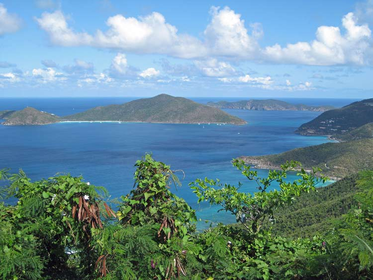 Roadside view in Tortola, British Virgin Islands. Photo by Pat Woods