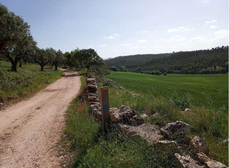 Path at Serras de Aire e Candeeiros Natural Park