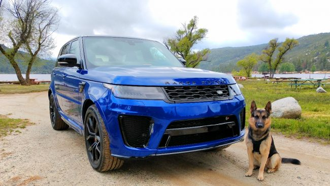 German Shepherd and range rover