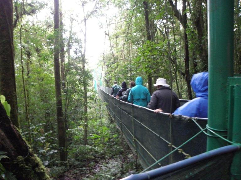 The Swinging Bridge is just one more way to explore the Monteverde Cloud Forest. Photo by Fyllis Hockman