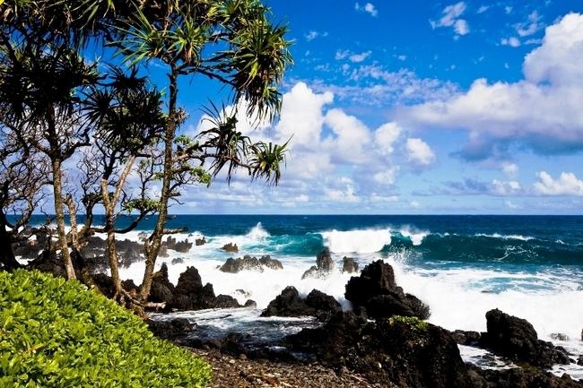 Wave Breaking Along the Hana Highway Coast, Maui Hawaii. Photo by Maui CVB