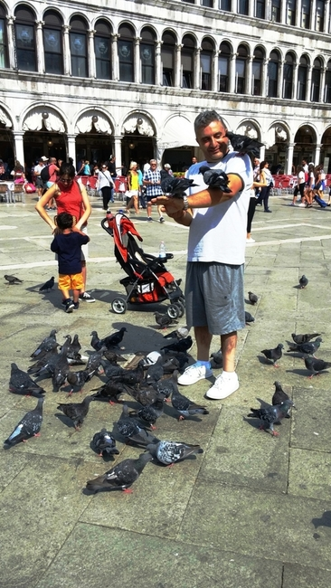 THE FAMOUS PIGEONS OF PIAZZA SAN MARCO. PHOTO BY FYLLIS HOCKMAN