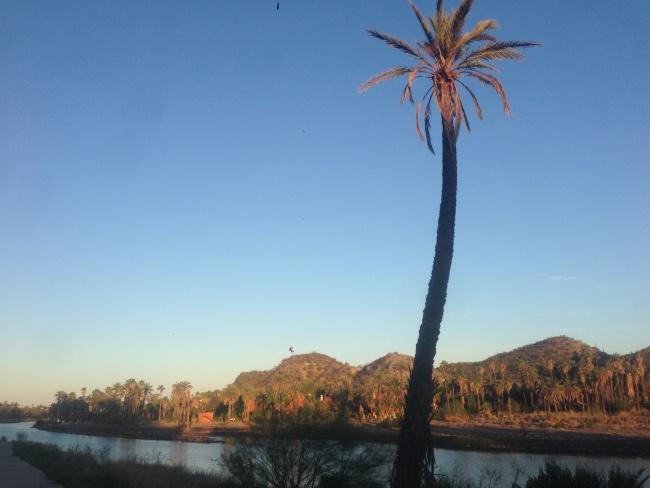 mulege- baja california sur- road trip-mulege river