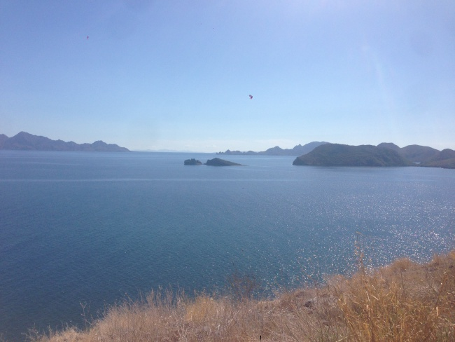 baja california sur- road trip- ocean- mulege- canada to mexico