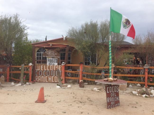 canada to mexico- baja california- catavina- roadtrip- coconuts
