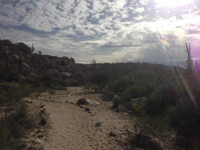 Baja california- canada to mexico- desert highway- roadtrip- campervan