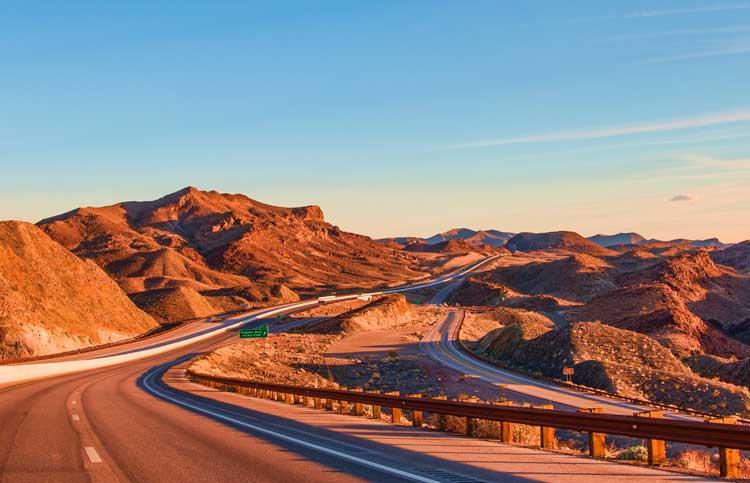 Desert beauty in Nevada