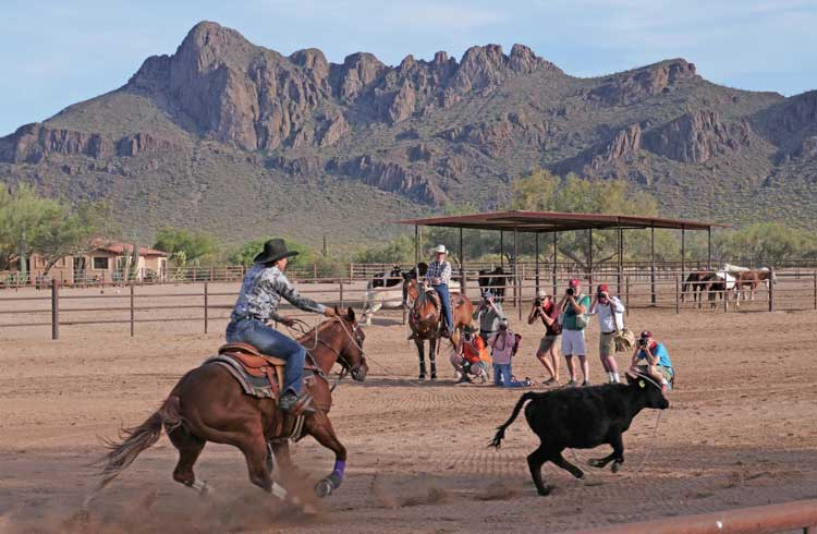 Weekly rodeos at White Stallion Ranch
