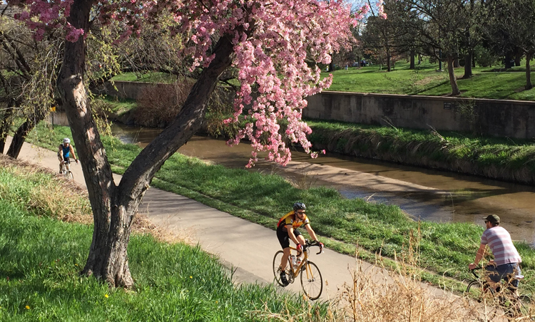 Biking along Cherry Creek in Denver, Colorado