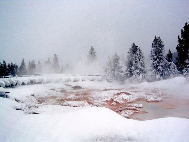 Water features in Yellowstone. Photo by Claudia Carbone