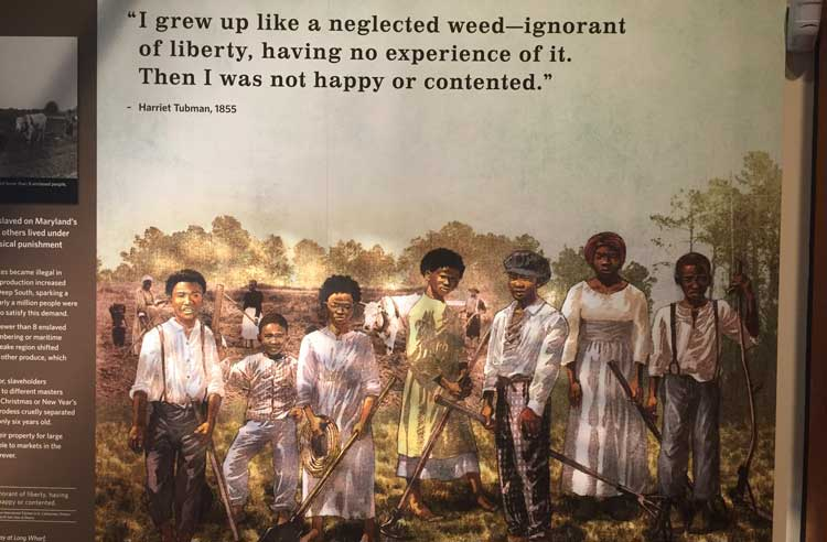 Illustrations, statues and videos tell the story of Harriet Tubman's life at the Harriet Tubman National Historic Site.