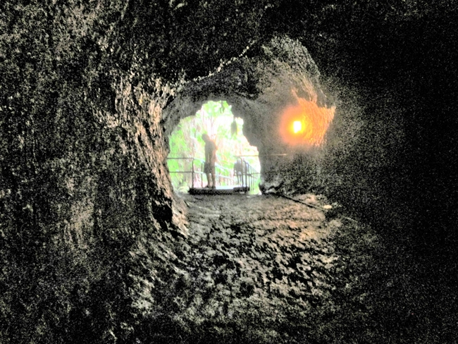 The Thurston Lava Tube on Hawaii Island. Photo by Victor Block