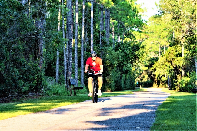 Animal Life Greets Bikers and Hikers on the Back Country Trail. Photo by Gulf Shores & Orange Beach Tourism