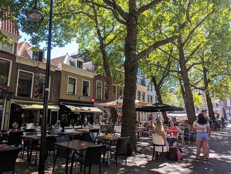 delt cafes