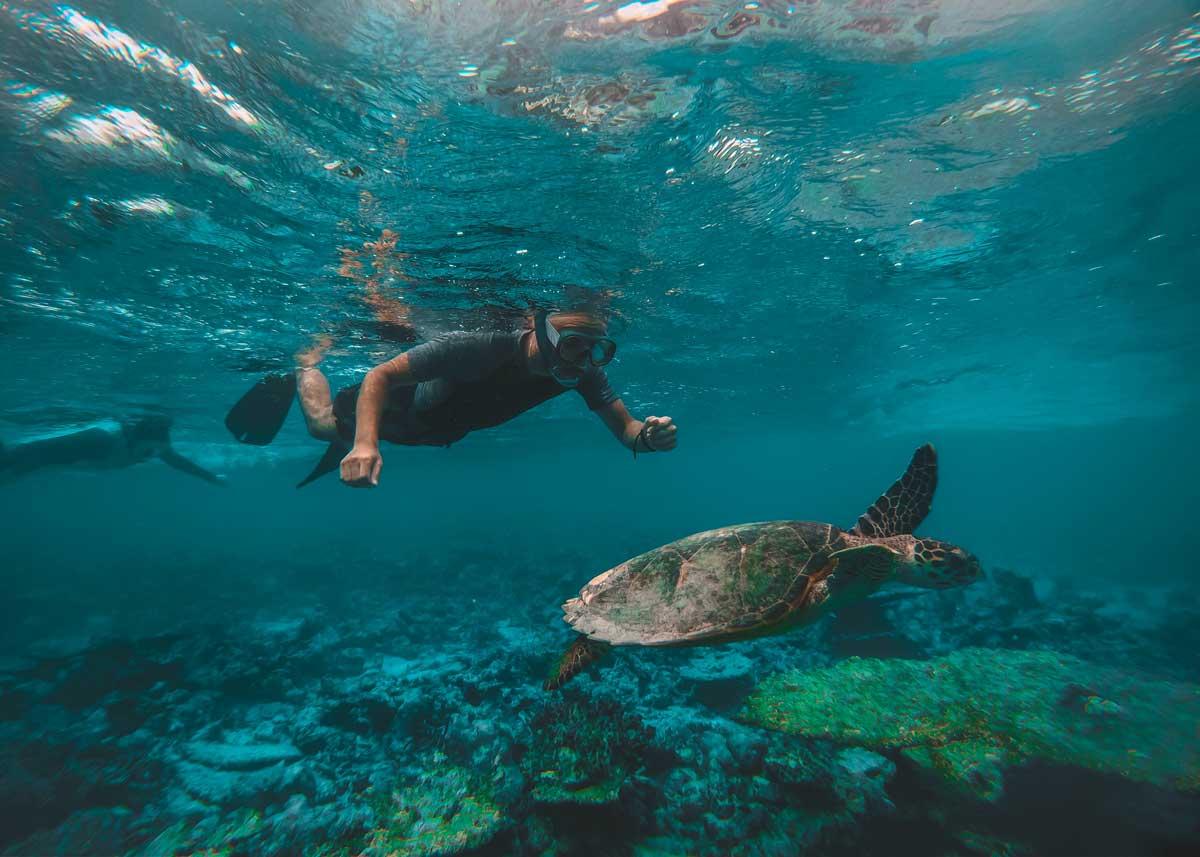 https://www.goworldtravel.com/wp-content/uploads/2019/12/where-to-go-snorkeling-hawaii.jpg