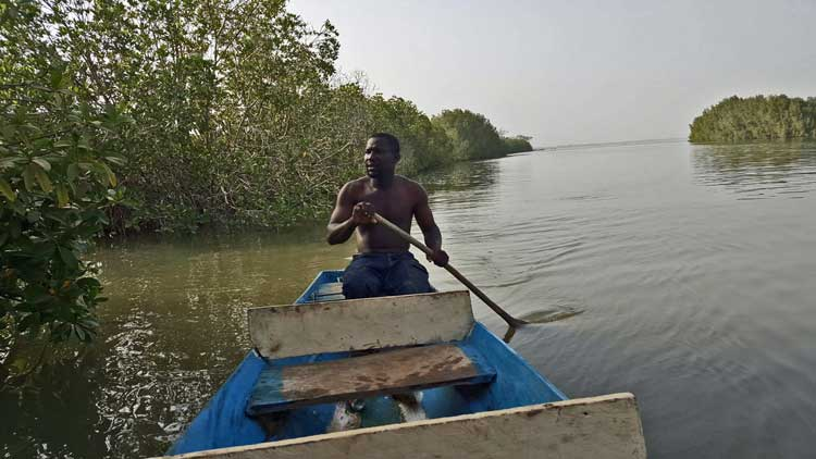 Bitang-Bolong---Paddling-on-the-Gambia-River