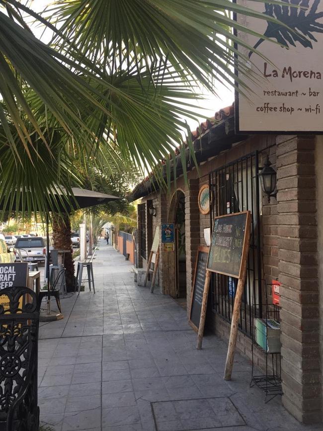 La morena- todos santos- mexico- road trip- canada to baja