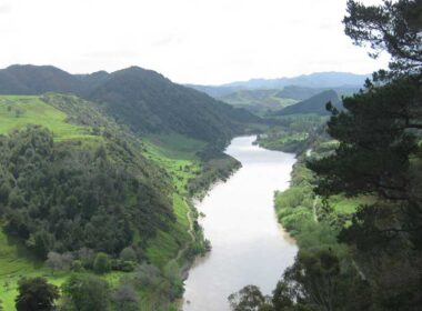Whanganui River. Photo by Felix Engelhardt on Flickr
