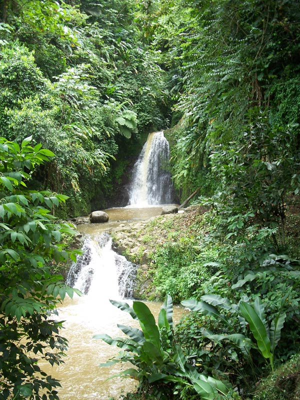 Grenada is lush with waterfalls and tropical forests.