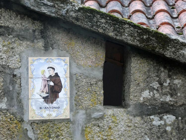 Portuguese born St. Anthony is revered