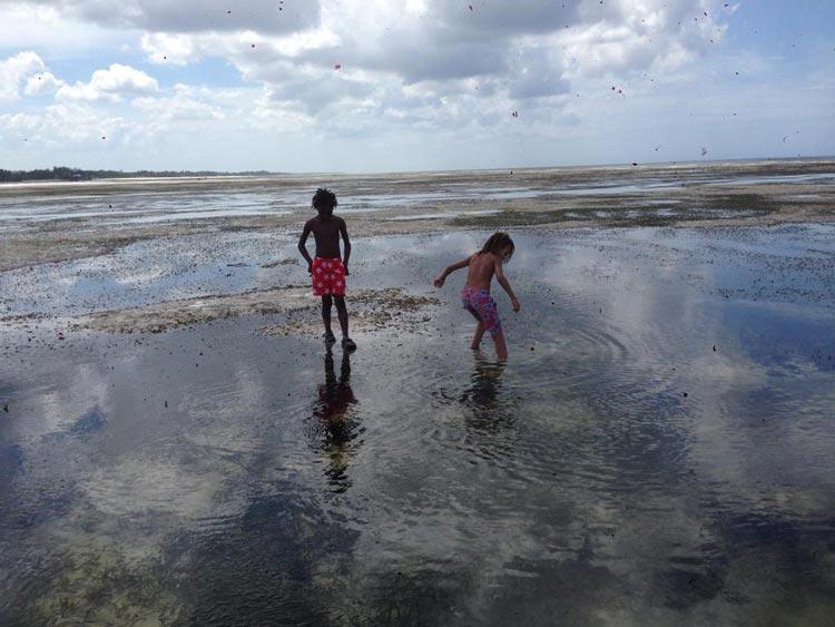 Prestine Beach Jambiani Zanzibar