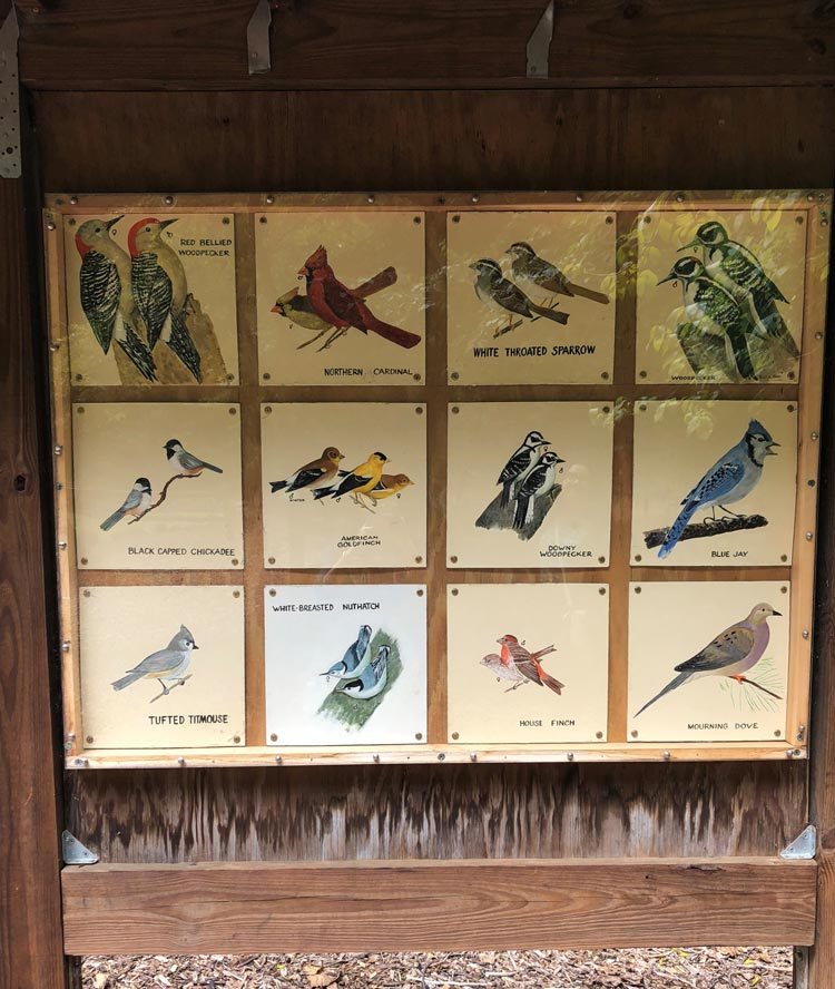 Display of the bird board at Theodore Roosevelt Sanctuary, the first Audobon sanctuary.