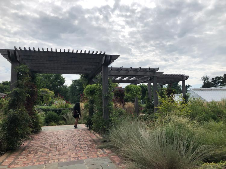 Enjoying the gardens at Planting Fields Arboretum in Long Island
