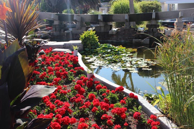 A decorative pond at Gorey Castle in Jersey. Photo by Cleo Harratt